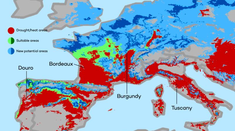 Hoe ziet de wijnbouw in Europa er in 2050 uit als gevolg van de klimaatcrisis?