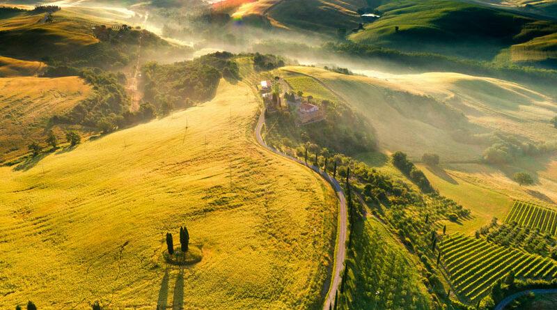Italiaanse landschap met wijngaarden